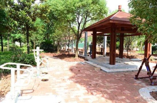 新建的小游园,包括社区公园,街边绿地,道路绿地,居住绿地和非城