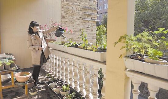 在黄赐英家,二楼是育苗基地,许多的花卉就是从这里培育出来的 记者 张媛 实习生夏湘鹏/摄  黄赐英家的楼顶是绿色蔬菜种植区,家里一年四季都有蔬菜吃   根据创建全国文明城市相关要求,市民种绿护绿公益活动参与率要达70%以上。11月13日上午,由株洲市园林绿化局主办的2014株洲绿色家庭颁奖活动在神农公园举行,黄赐英等6户家庭获评株洲市绿色家庭。   二楼阳台养了20多种花   楼顶种菜,自给自足   只要你有心,家里的前坪后院或是阳台,都可以成为你的私家小花园。屋前院后种树栽花,家中二楼养
